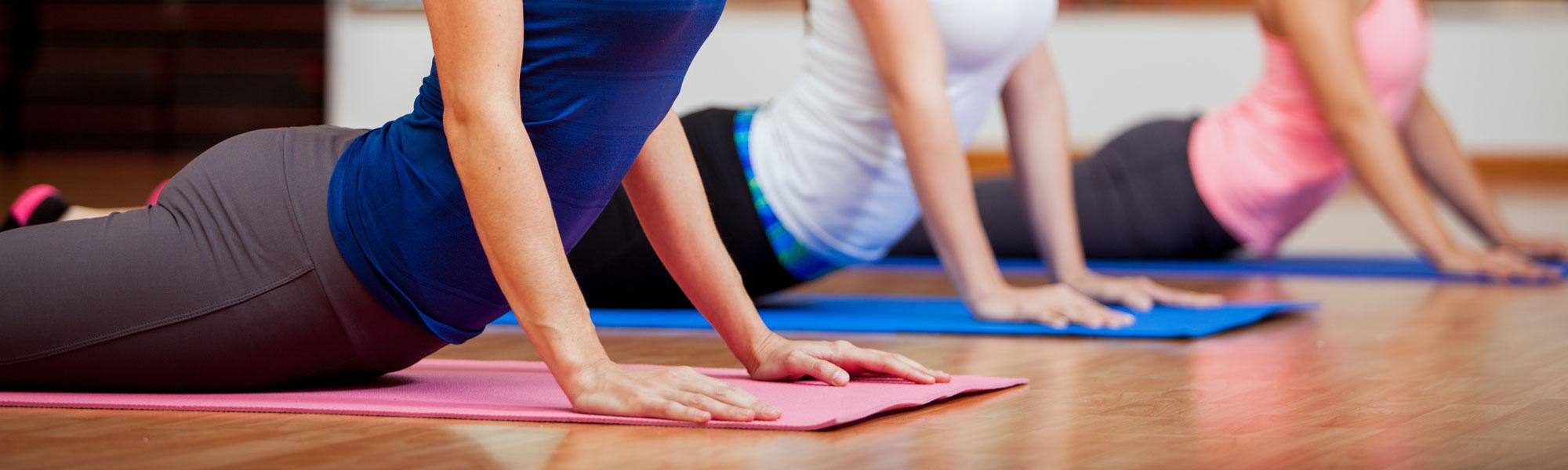 Clinical Pilates (level 1) – Ana Rita Cruz & Cristina Vilas Boas